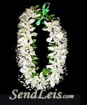 White Orchid Haku - Head Lei