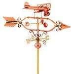 biplane windcup