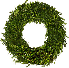Fresh Boxwood Wreath - 24 Inch